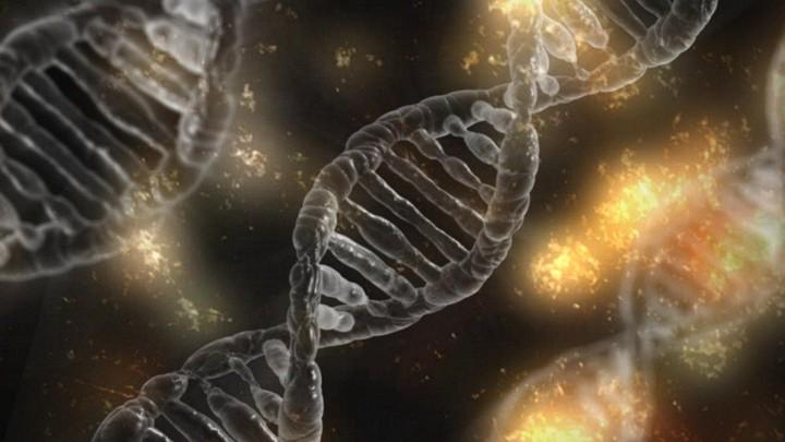 Сквозь мутации к звездам