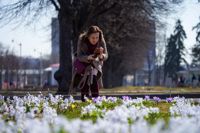 «Окно» хорошей погоды ожидается в Москве в начале майских праздников