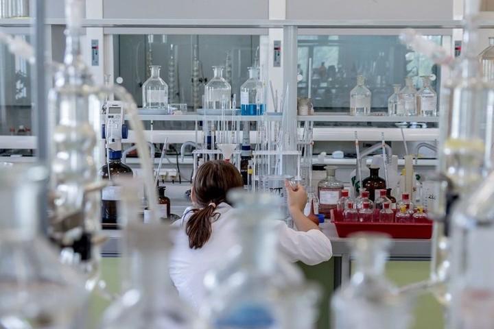 Заглянуть внутрь себя помогут биоинженеры