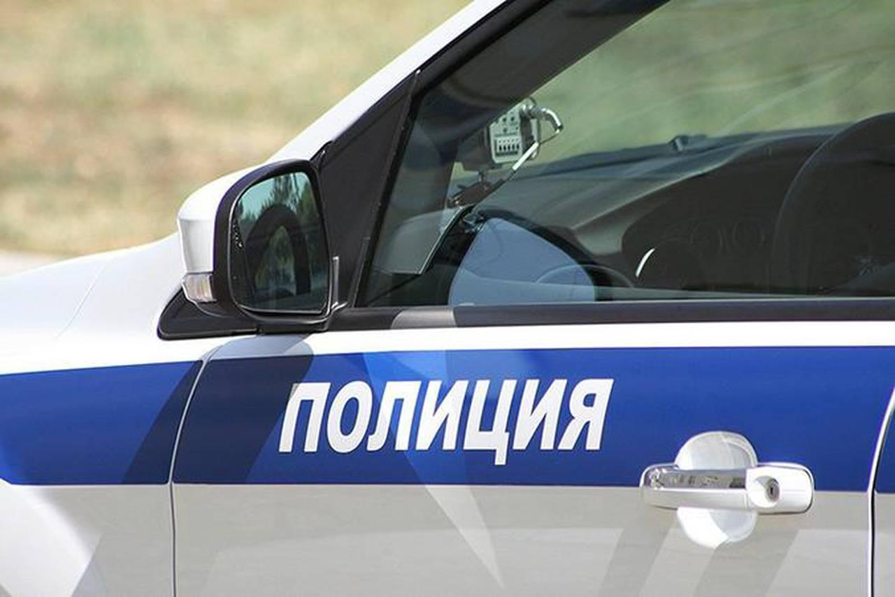 Полицейские района Чертаново Южное задержали подозреваемого в краже. Фото: сайт мэра Москвы