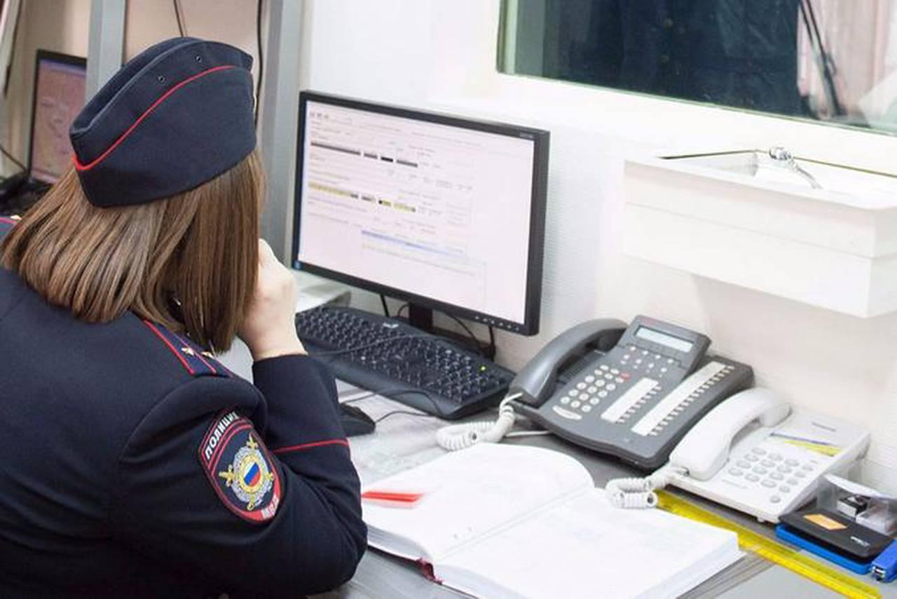 Полицейские района Нагатино-Садовники задержали подозреваемую в краже. Фото: сайт мэра Москвы