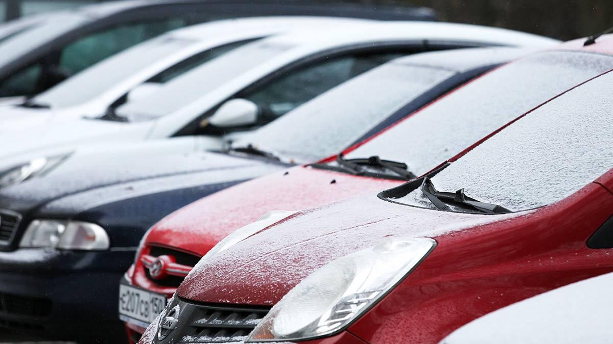 Синоптик предупредил о заморозках в Подмосковье к концу недели
