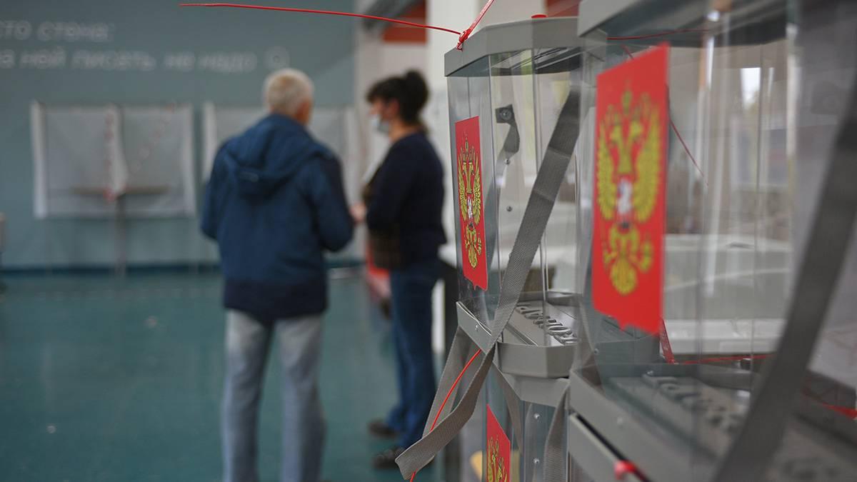 IT-эксперт: Онлайн-голосование —сложная система, которая требует времени для отработки