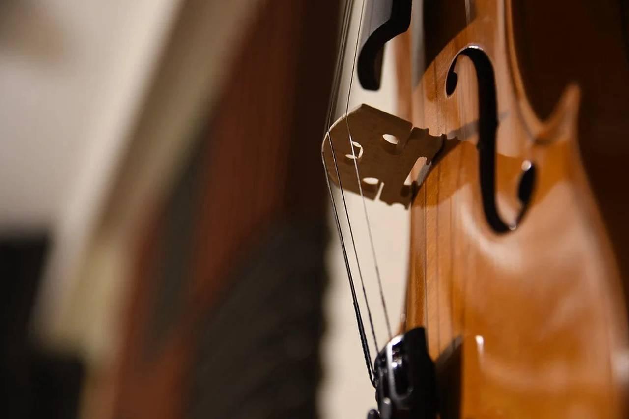 Скрипичный концерт состоится в библиотеке Нагатинского Затона. Фото: pixabay.com