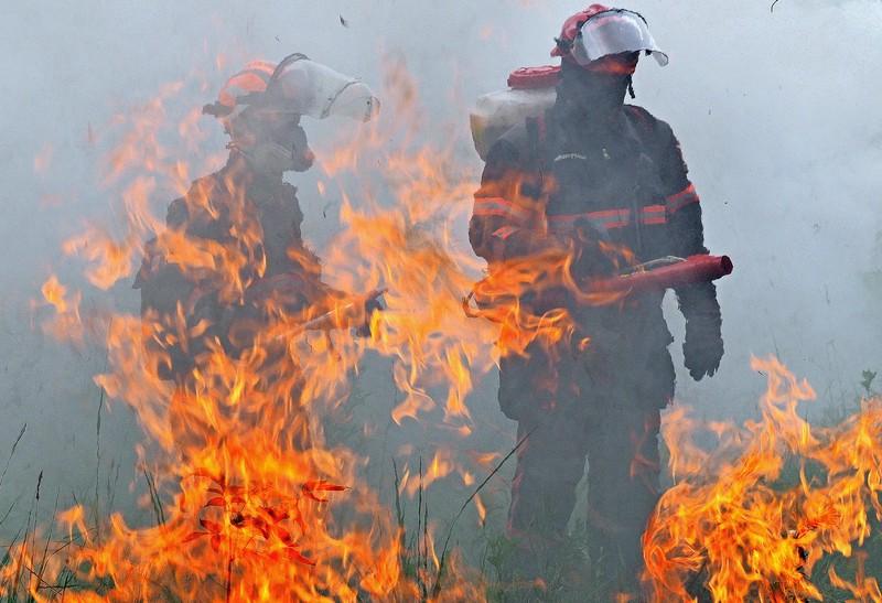 МЧС перечислило самые «горящие» районы Подмосковья